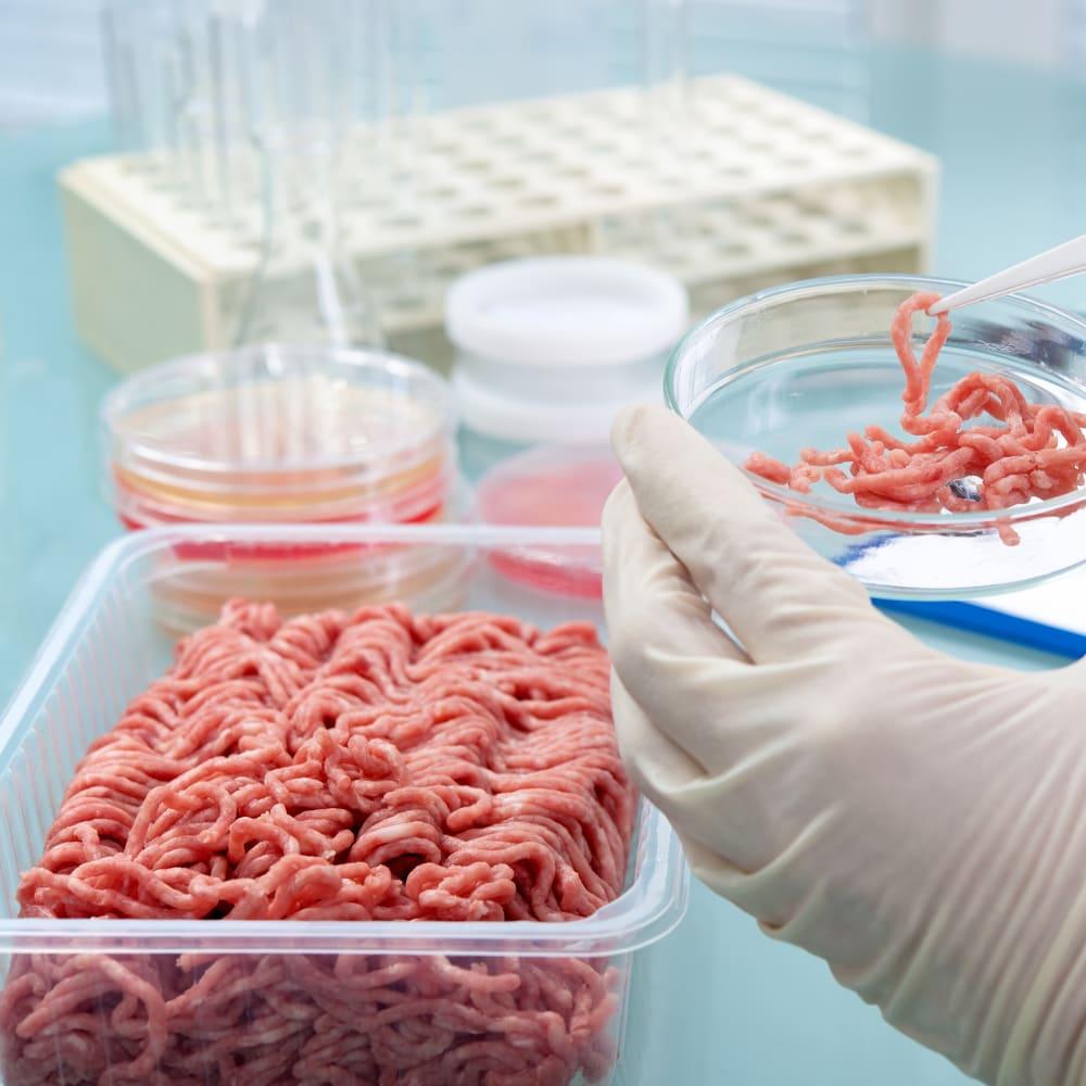 Nitrogen & protein determination in meat products