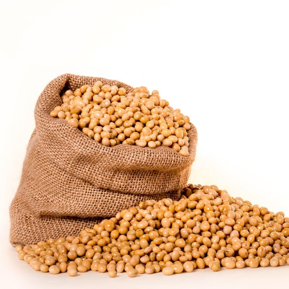 Nitrogen & protein determination in corn, flour and soy