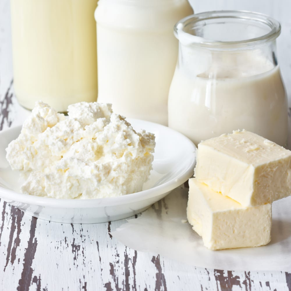 Protein determination and nitrogen and in dairy products