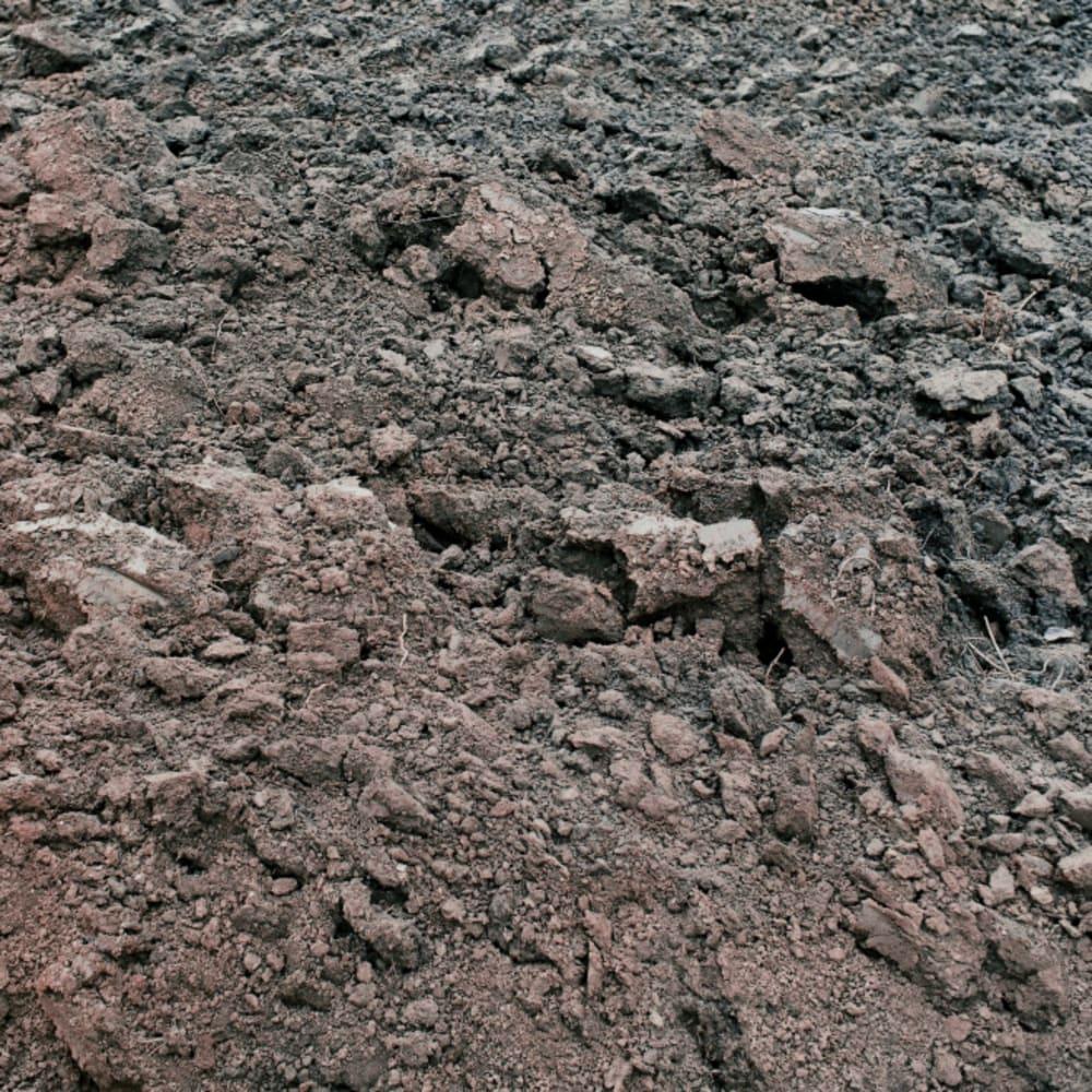PAH determination in sediment
