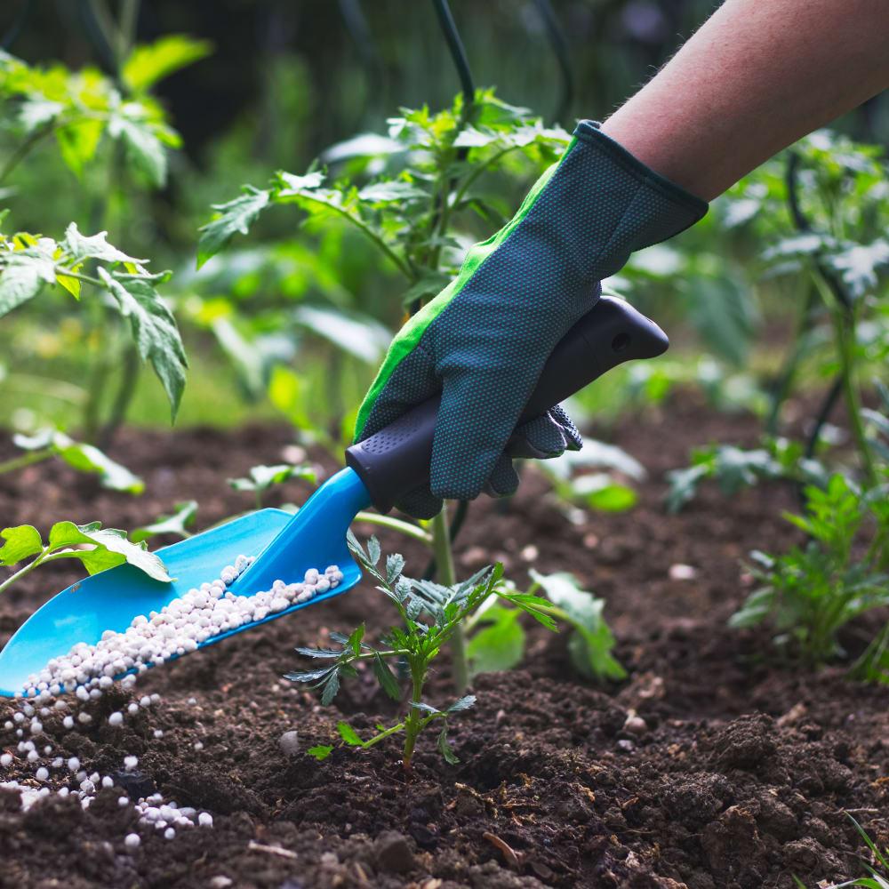 Nitrogen determination in soil